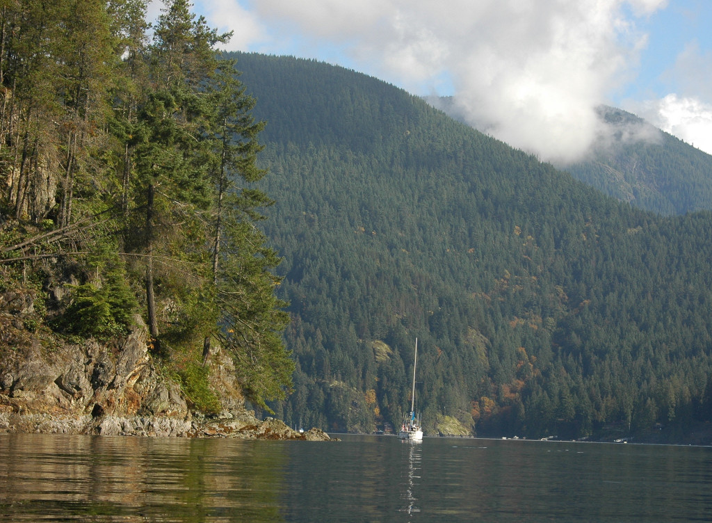 Kayaking at Deep Cove in British Columbia travellivelearn.com