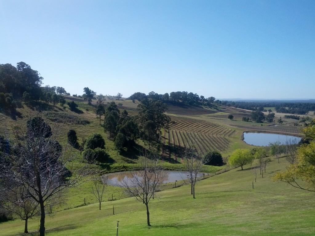Hunter Valley romantic getaway - Bistro Molines - vineyard views