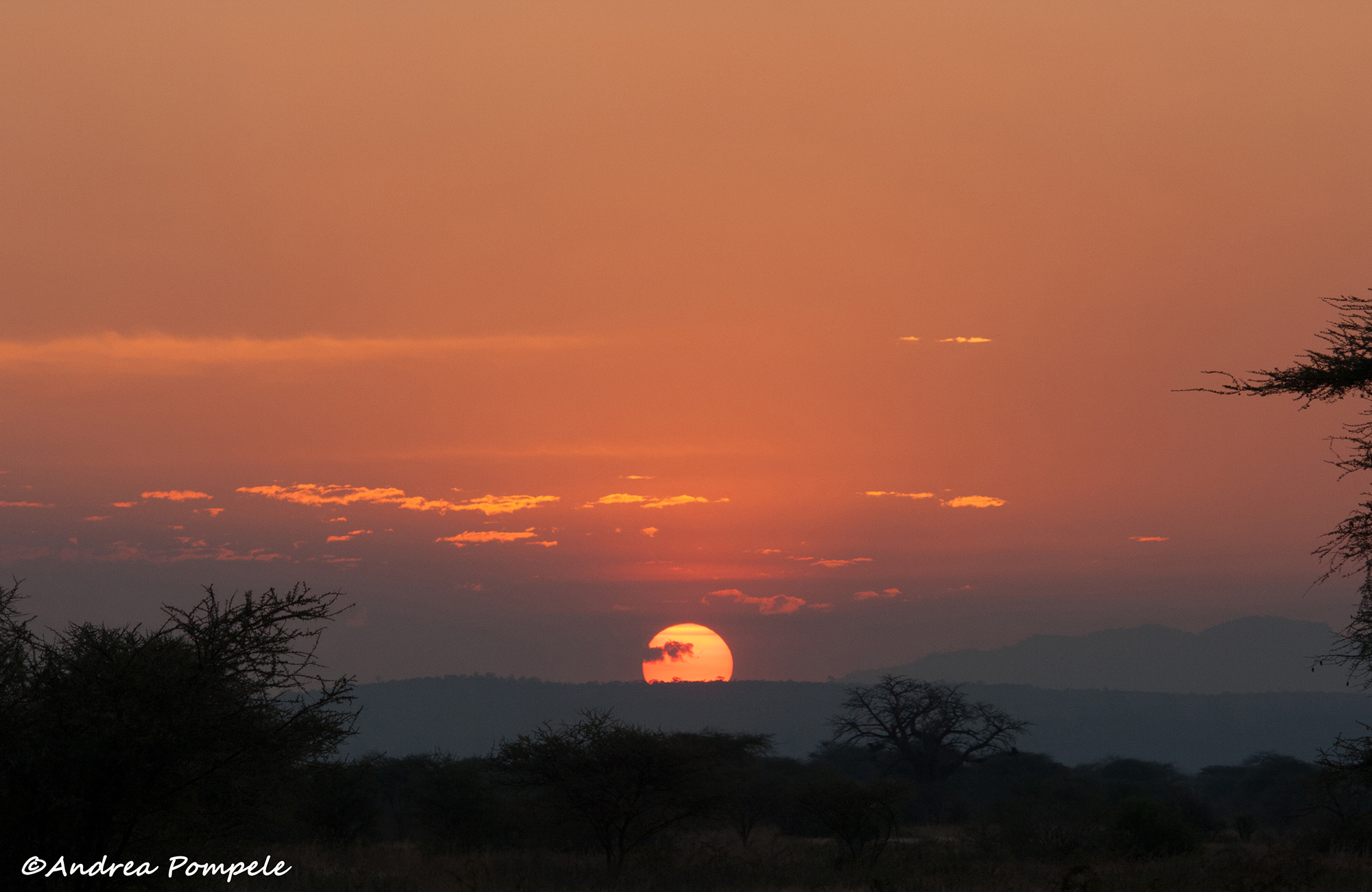 Africa conservation adventure sunset travellivelearn.com