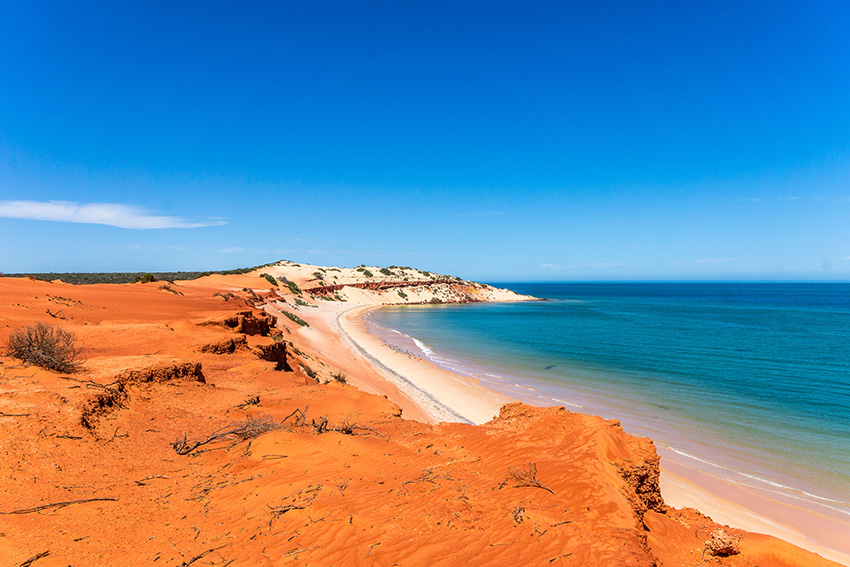House sitting Australia guide - the real experience